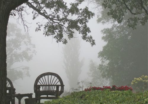 chairfog.jpg